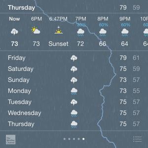 Tut Tut! It looks like rain!